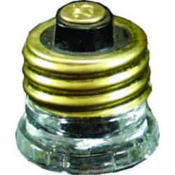 15A SCREW IN FUSE
