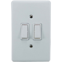 2 LEVER COVER PLATE