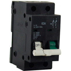 63A 2POLE ISOL GRN/WHT + OVERLOAD